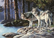 Dimensions Paint By Number Grey Wolves 20x14
