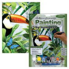 Paint By Number Jungle Toucan