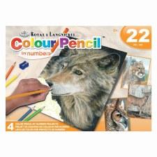 Royal & Langnickel Color Pencil By Numbers American Wildlife 22pc
