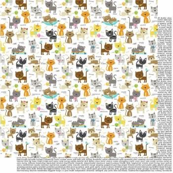 Chloe 12x12 Paper- Cat Crazy