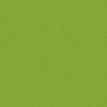 12x12 Green Cardstock- Crisp Green