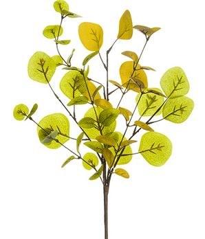 "Eucalyptus Spray, 17""- Green/Mustard"