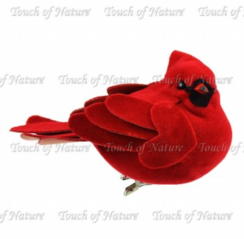 """Touch of Nature Cardinal, 3"""""""