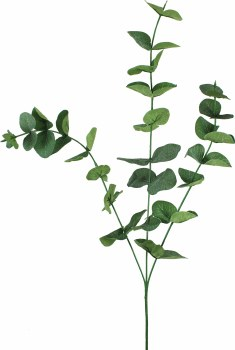 "31"" Eucalyptus Spray- Green"