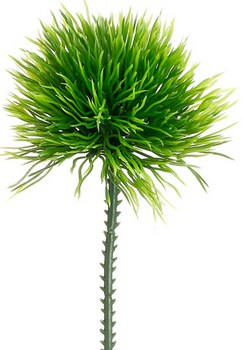 """Moss Grass Pick, 6"""""""