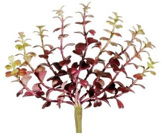 "Jade Plant Pick, 7.5""- Burgundy/Green"