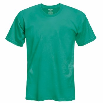 Adult T-Shirt- Antique Jade, Small