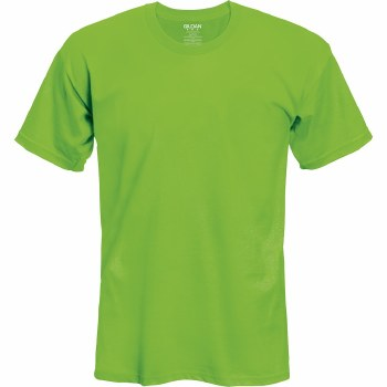 Adult T-Shirt- Lime, Small