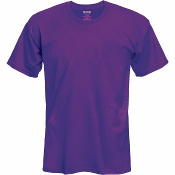 Adult T-Shirt- Purple, Small