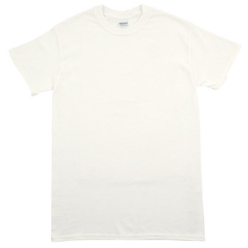 Adult Short Sleeve T Shirt- White, Small