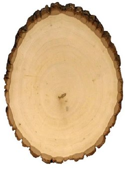 Basswood Round, Large