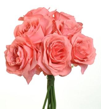 Ashley Rose Wedding Bouquet- Coral