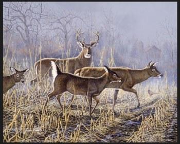 Nature & Wildlife Fabric Panel- Cornfield Crossing