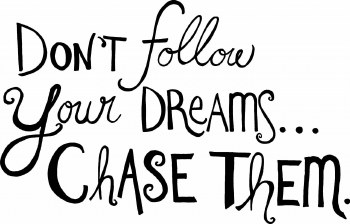 """""""Don't Follow Your Dreams... Chase Them"""" Vinyl"""