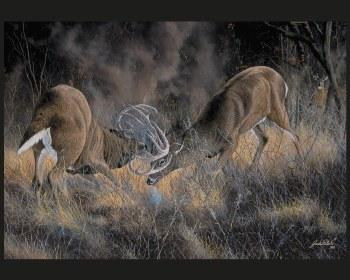 Nature & Wildlife Fabric Panel- Fierce Rivals