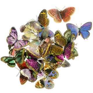 Butterfly Embellishments, 24ct- Gold Brushed Mix