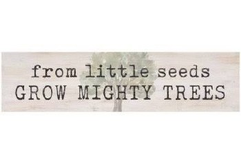 Skinny & Small Wood Sign- From Little Seeds