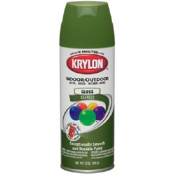 Krylon Indoor/Outdoor 12oz Spray Paint- Gloss, Seaweed