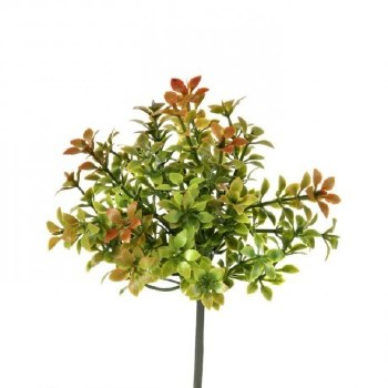 """Thyme Pick, 6""""- Green/Red"""