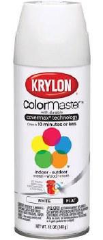 Krylon Indoor/Outdoor 12oz Spray Paint- Flat, White