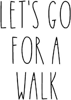 """ Let's Go For A Walk"" Vinyl"