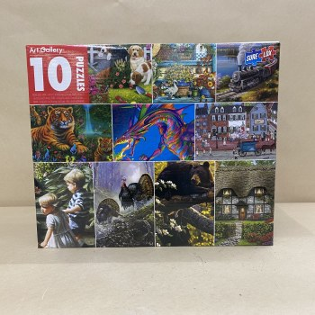 10 in 1 Puzzle- Art Gallery