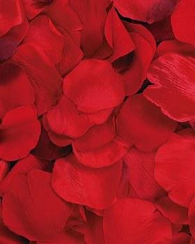 Victoria Lynn Rose Petals, 100ct- Red