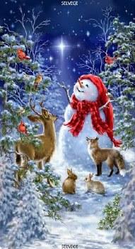 Christmas & Winter Fabric Panel- Starry Night