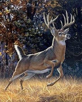 Nature & Wildlife Fabric Panel- Startled Buck