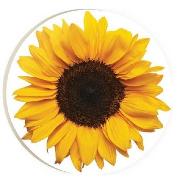 Car Coaster- Sunflower