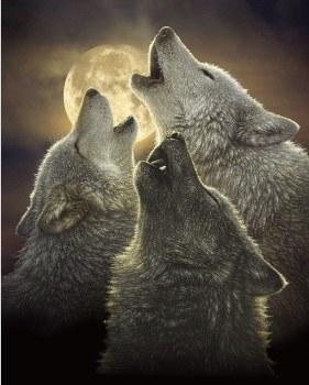 Nature & Wildlife Fabric Panel- Wolf Trinity