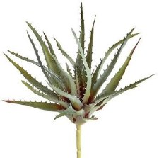 "Aloe Pick, 10""- Green/Gray"