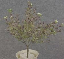 """Boxwood Mini Bush, 11"""""""