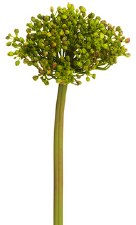 "Allium Bud Spray, 12""- Green"