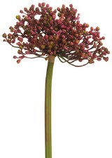 "Allium Bud Spray, 12""- Purple"
