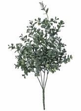 """12"""" Blue Boxwood Bush"""