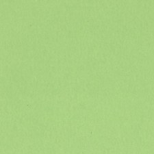12x12 Green Smooth Cardstock- Apple Crush