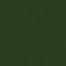 12x12 Green Textured Cardstock- Avocado