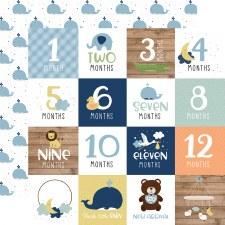 Baby Boy 12x12 Paper- Milestones