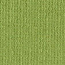 12x12 Greenn Textured Cardstock- Parakeet