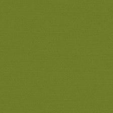 12x12 Green Textured Cardstock- Spanish Moss