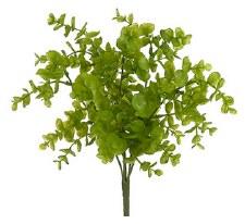"Eucalyptus Bush, 13""- Light Green"