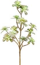 "Soft Echeveria Pick, 15""- Green/Gray"