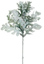 Dusty Miller Spray, 17""