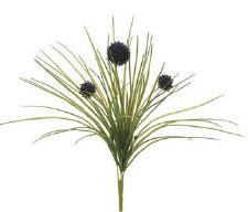 """Allium Bush, 18""""- Purple"""