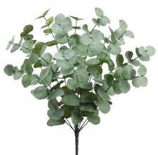 "Eucalyptus Leaf Bush, 19.5"""