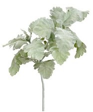 Dusty Miller Spray, 19""