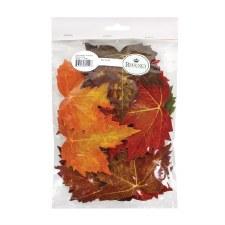 Loose Leaves Bag- Maple, 20pc