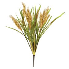 "20"" Wheat Bush"