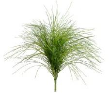"""Grass Bush, 21""""- Willow"""